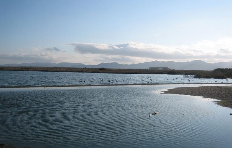 El pocico las marinas en cabo de gata en almeria