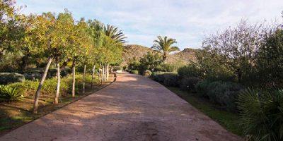 Jardin botánico del albardinal en cabo de gata en almeria